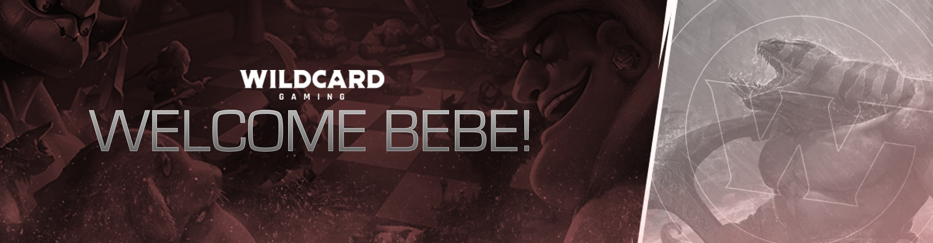 Wildcard Gaming Welcomes Pro Autochess Player Bebe!!!